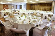 Buckingham Suite for Weddings up to 220 guests